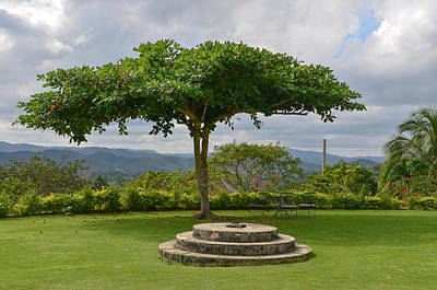 Photograph - Good Hope Estate Lawn Jamaica by RobLew Photography