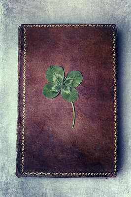 Four Leaf Clover Photograph - Good Luck by Joana Kruse