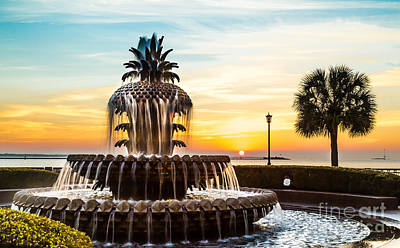 Photograph - Good Morning Charleston Pineapple Fountain by Donnie Whitaker