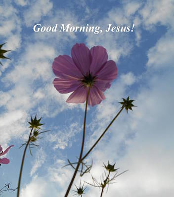 Photograph - Good Morning Jesus by Diannah Lynch