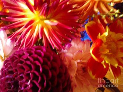 Hawaiin Photograph - Good Morning To You by Cindy McClung