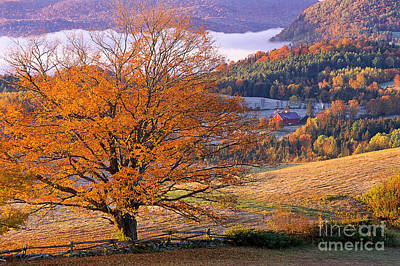 Photograph - Good Morning Vermont by Alan L Graham