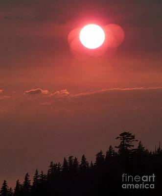 Photograph - Good Night Sun  by Susan Garren