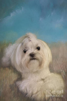 Puppy Digital Art - Good Things Come In Small Packages by Lois Bryan
