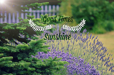 Photograph - Good Times And Sunshine by Robin Dickinson