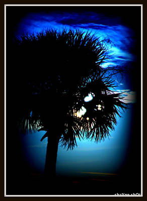 Photograph - Goodnight Blue Moon by Shayne Johnson Fleming