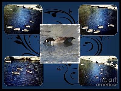 Photograph - Goose Art by Bobbee Rickard