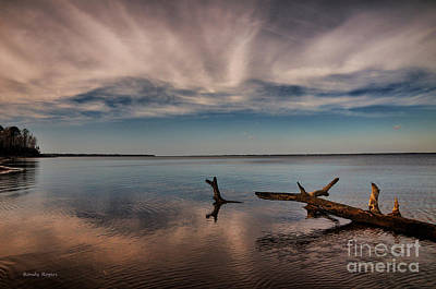 Photograph - Goose Creek Peace by Randy Rogers