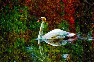 Painting - Swan by Rick Mosher