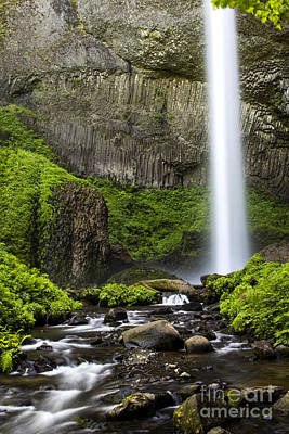Photograph - Gorge Green At Latourell Falls by Sonya Lang