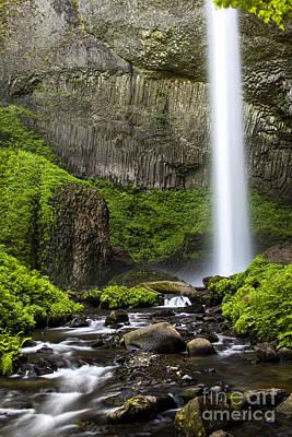 Photograph - Gorge Green At Latourell Falls by Sonya Lang