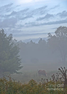 Photograph - Gorgeous Morning by Cheryl Baxter
