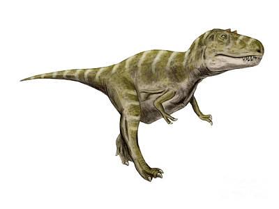 Anger Digital Art - Gorgosaurus Dinosaur by Nobumichi Tamura