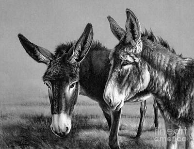 Drawing - Gossip by Pat Burns