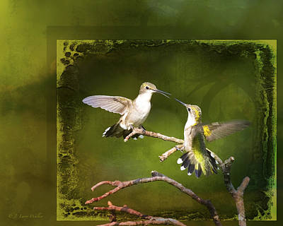Digital Art - Gossiping Hummingbirds by J Larry Walker