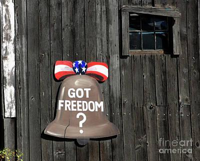 Photograph - Got Freedom by Karol Livote