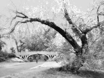 Gothic Bridge Photograph - Gothic Bridge by Jessica Jenney