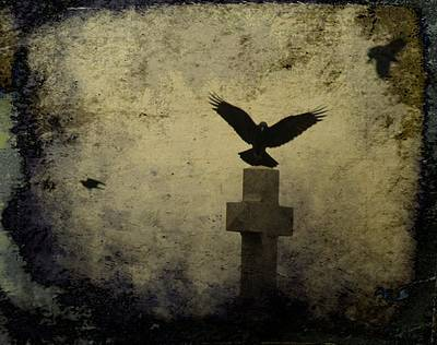 Birds In Graveyard Photograph - Gothic Landing by Gothicolors Donna Snyder