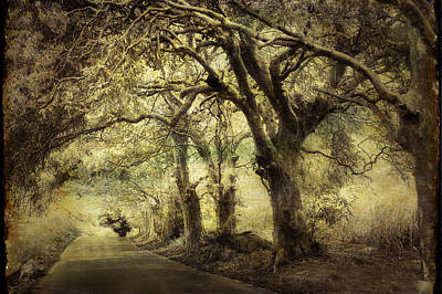 Ethereal - Gothic Road by Jenny Rainbow