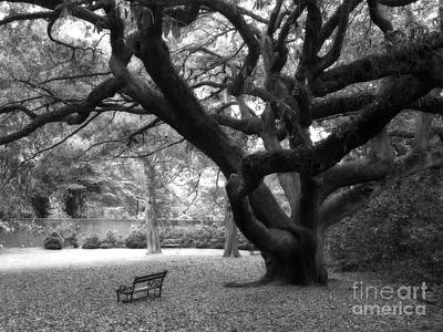 Gothic Surreal Black And White South Carolina Angel Oak Trees Park Landscape Art Print by Kathy Fornal