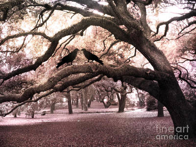Crow Photograph - Gothic Surreal Oak Trees And Ravens South Carolina by Kathy Fornal