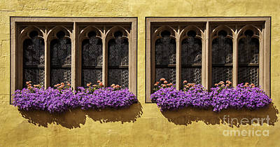 Photograph - Gothic Windows And Flower Box In Germany by Phil Cardamone