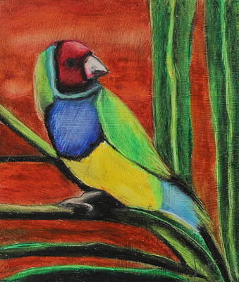 Animals Painting - Gouldian Finch by Jeanne Fischer