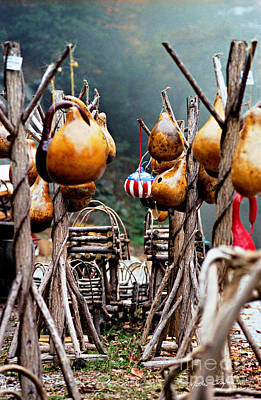 Photograph - Gourds 2002 by Matthew Turlington