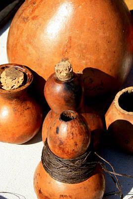 Photograph - Gourds Used For Dye Storage by Suzie Banks