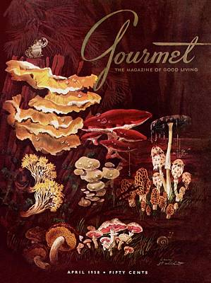 Photograph - Gourmet Cover Featuring Wild Mushrooms by Henry Stahlhut