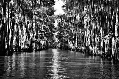 Photograph - Government Ditch 2 by Lana Trussell