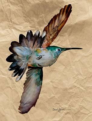 Birds Royalty-Free and Rights-Managed Images - DA180 Grace Daniel Adams by Daniel Adams
