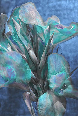 Graceful Gladiolas Art Print by Camille Lopez