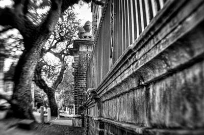 Graceful Old Oak And Fence Two Art Print by Andrew Crispi
