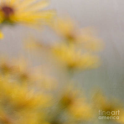 Photograph - Graceful Yellow by Kerri Farley