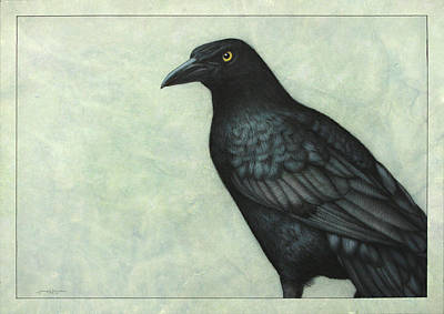 Crow Drawing - Grackle by James W Johnson