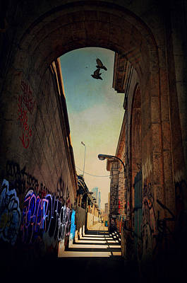 Photograph - Graffiti Row by Emily Stauring