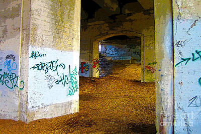 Photograph - Graffiti Under The Bridge by Nina Silver
