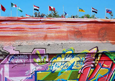 Photograph - Graffiti With Flags by Anne Cameron Cutri