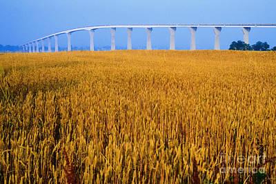 Farming Digital Art - Grain And Route 4 Bridge by Thomas R Fletcher