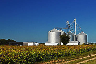 Photograph - Grain Elevator On Starr Road by Bill Swartwout