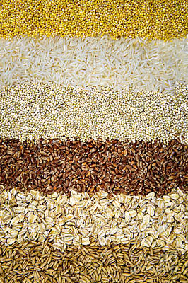 Loose Photograph - Grains by Elena Elisseeva