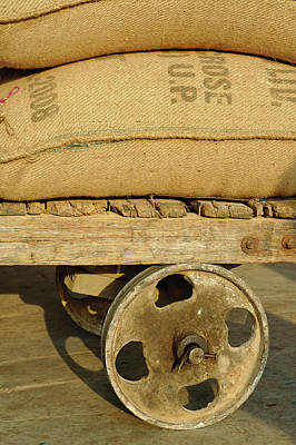 Grains In Burlap Sacks On Primitive Print by Adam Jones