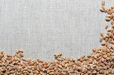 Large Group Of Objects Photograph - Grains Of Wheat by Wladimir Bulgar
