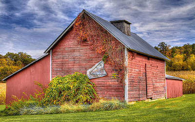 Sultry Plants - Granary and Clouds by Alan Koxlien