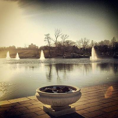 Skylines Wall Art - Photograph - Grand Basin Forest Park by Genevieve Esson