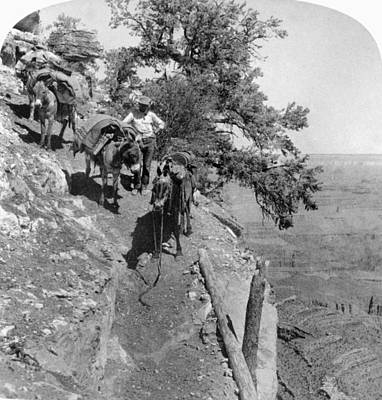 Grand Canyon Of Arizona Painting - Grand Canyon, 1903 by Granger