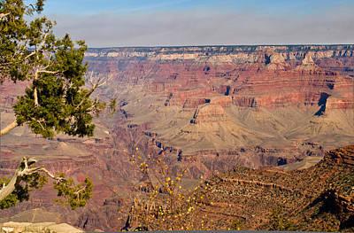 Grand Canyon 30 Art Print by Douglas Barnett