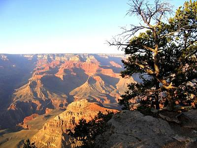 Photograph - Grand Canyon 63 by Will Borden