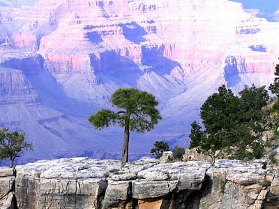 Photograph - Grand Canyon 73 by Will Borden